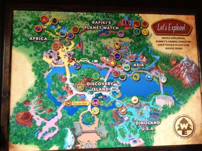 Disney's Animal Kingdom.